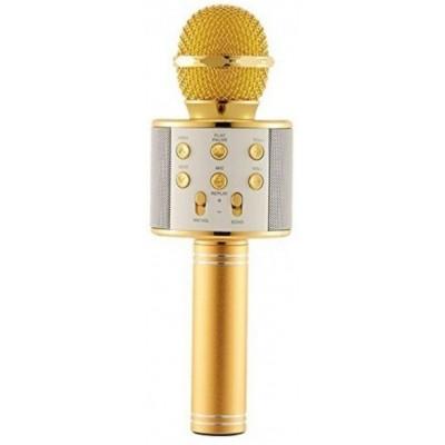 Мікрофон Karaoke 858 Gold